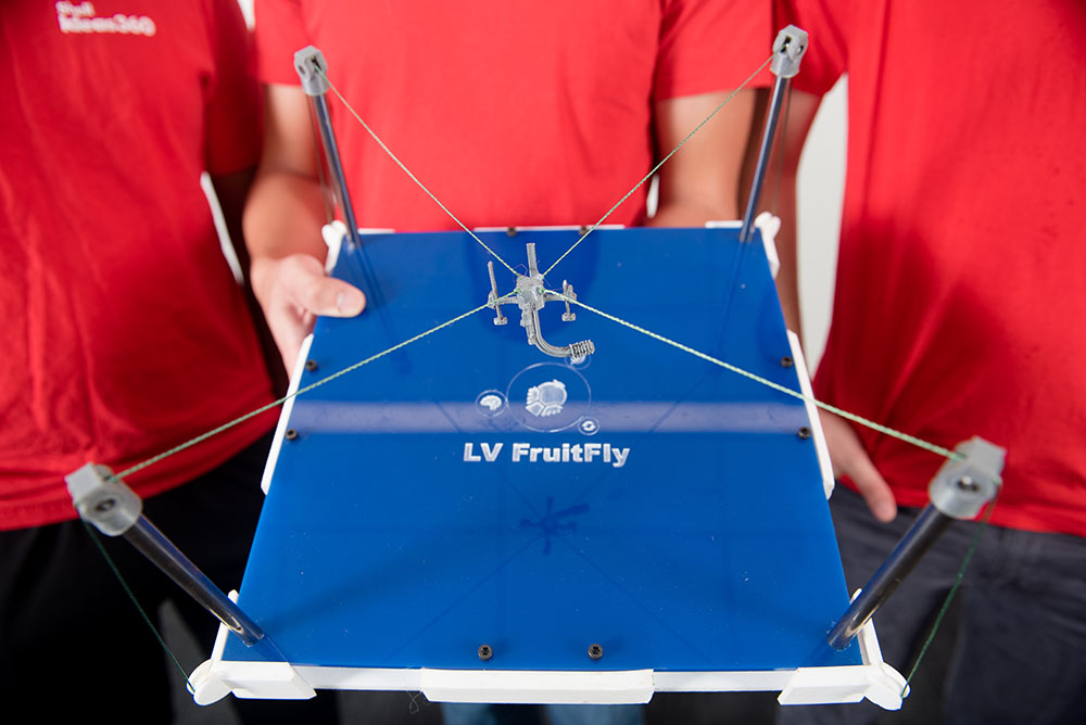 Engineering Protype for LV Fruitfly